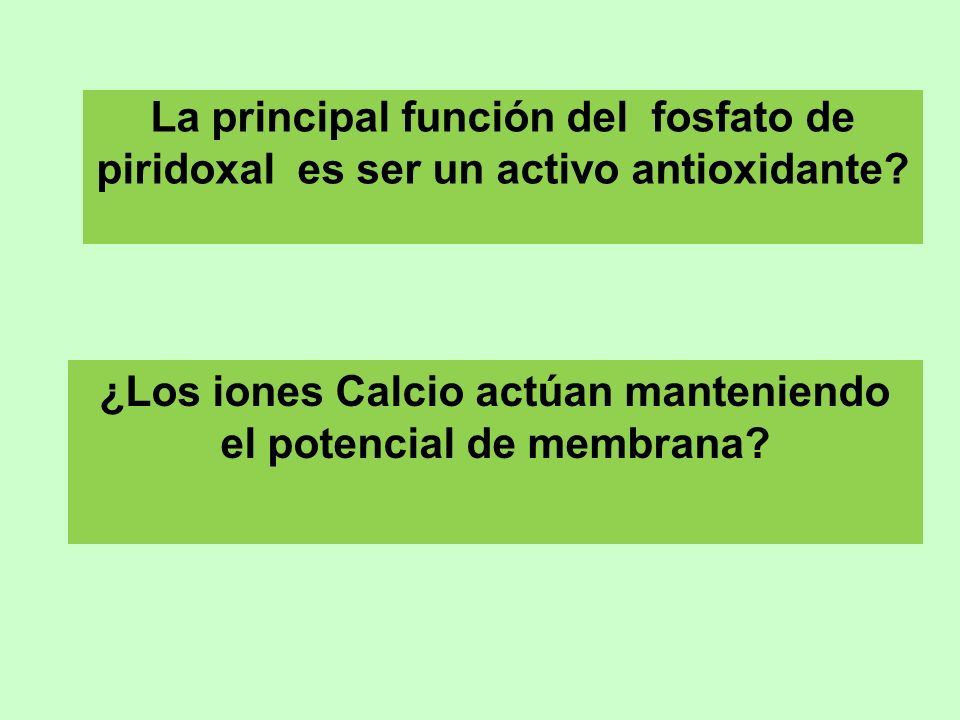 ¿Los iones Calcio actúan manteniendo el potencial de membrana