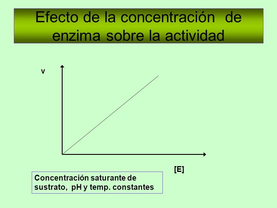 Efecto de la concentración de enzima sobre la actividad