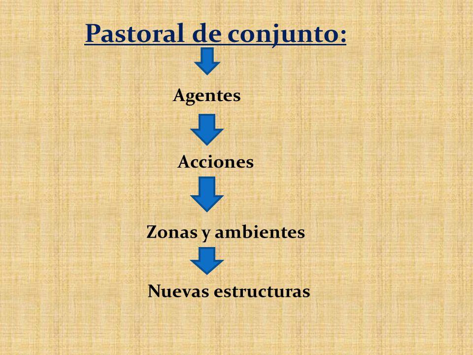 Pastoral de conjunto: Agentes Acciones Zonas y ambientes