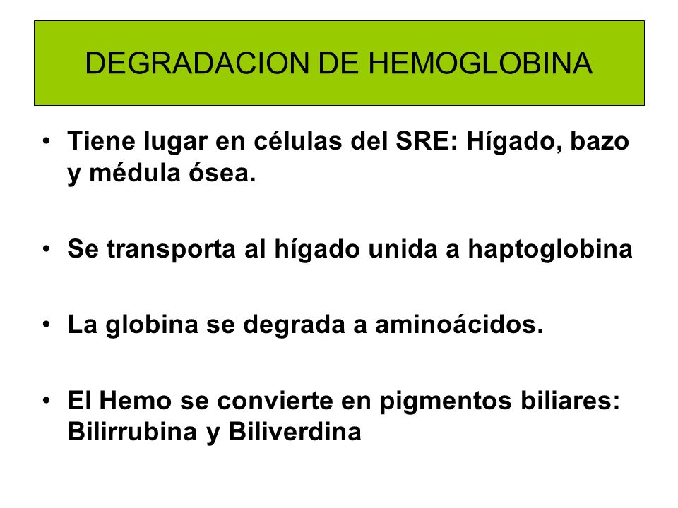DEGRADACION DE HEMOGLOBINA