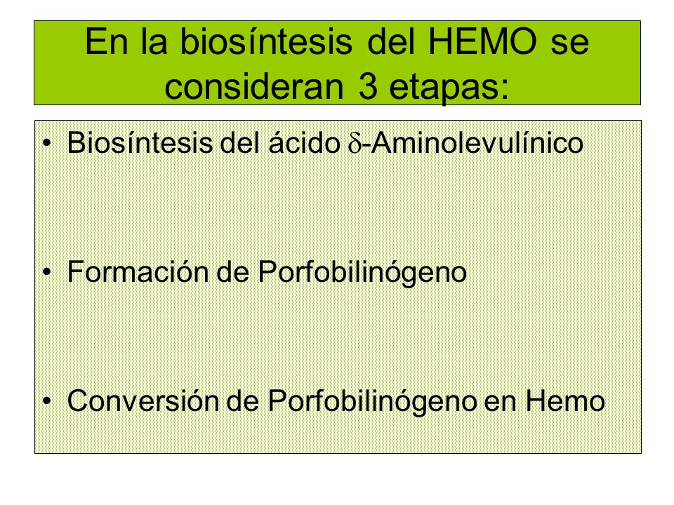En la biosíntesis del HEMO se consideran 3 etapas: