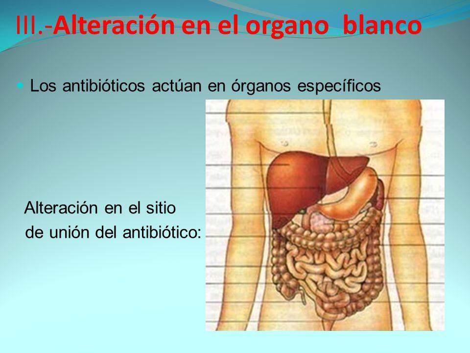 III.-Alteración en el organo blanco