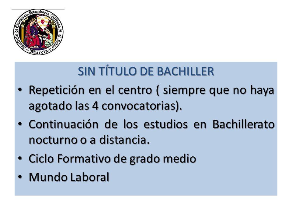 SIN TÍTULO DE BACHILLER