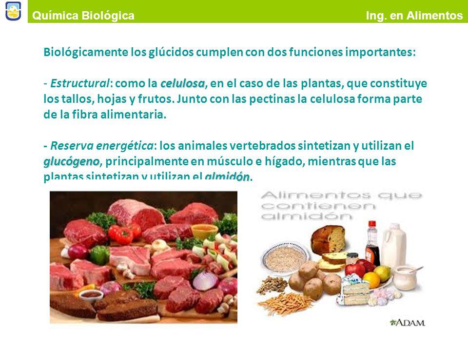 Biológicamente los glúcidos cumplen con dos funciones importantes: