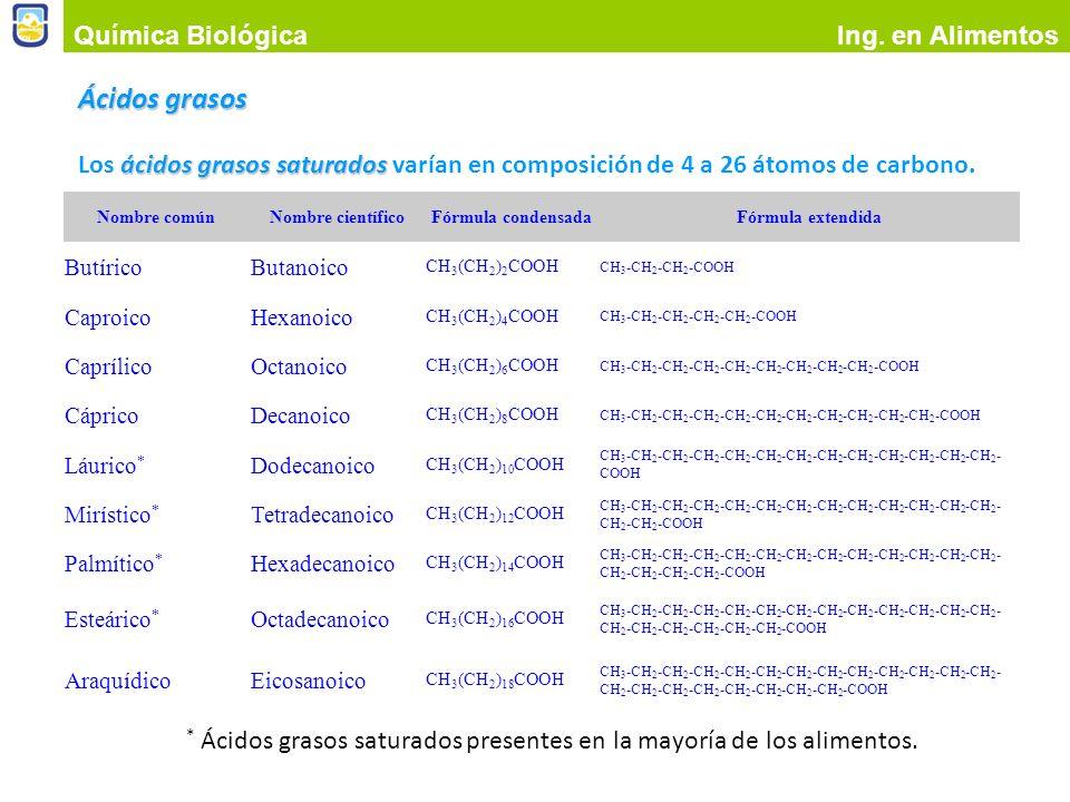 Ácidos grasos Química Biológica Ing. en Alimentos