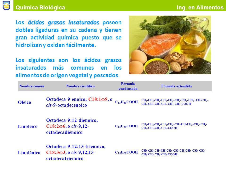 Química Biológica Ing. en Alimentos.