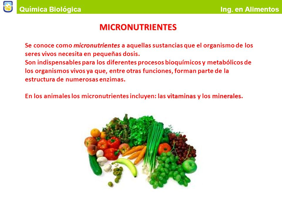 MICRONUTRIENTES Química Biológica Ing. en Alimentos