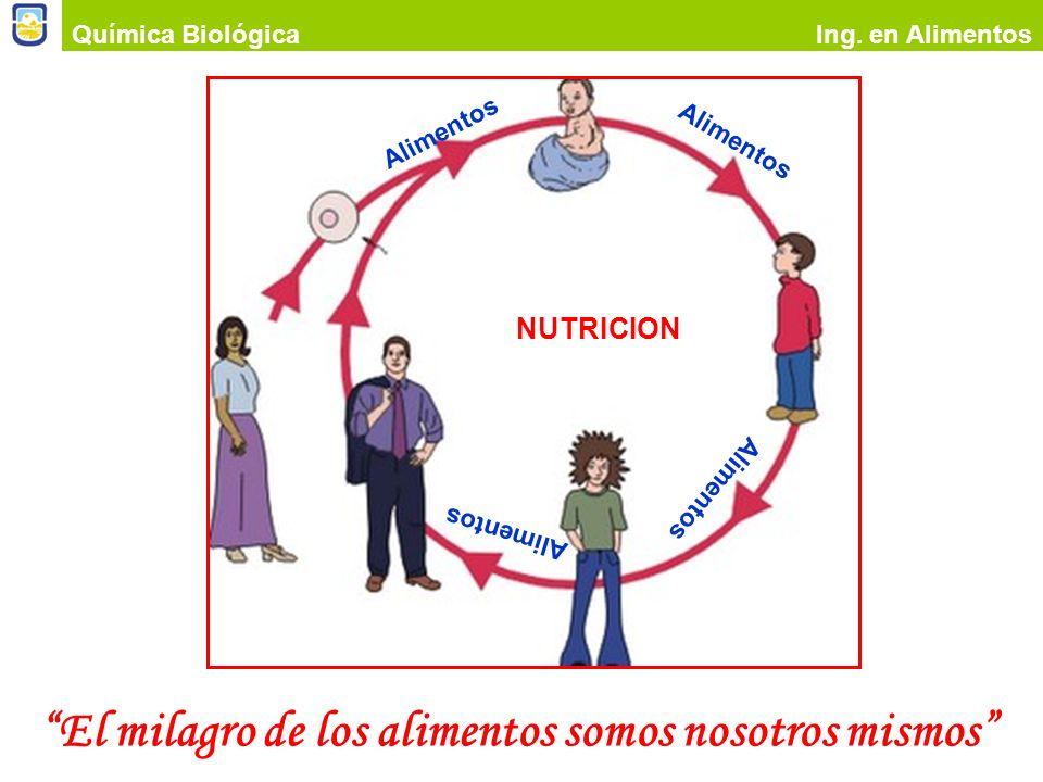 El milagro de los alimentos somos nosotros mismos