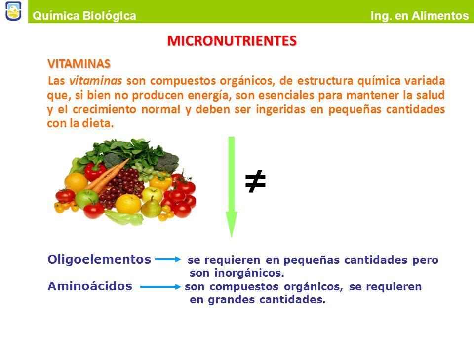 ≠ MICRONUTRIENTES VITAMINAS