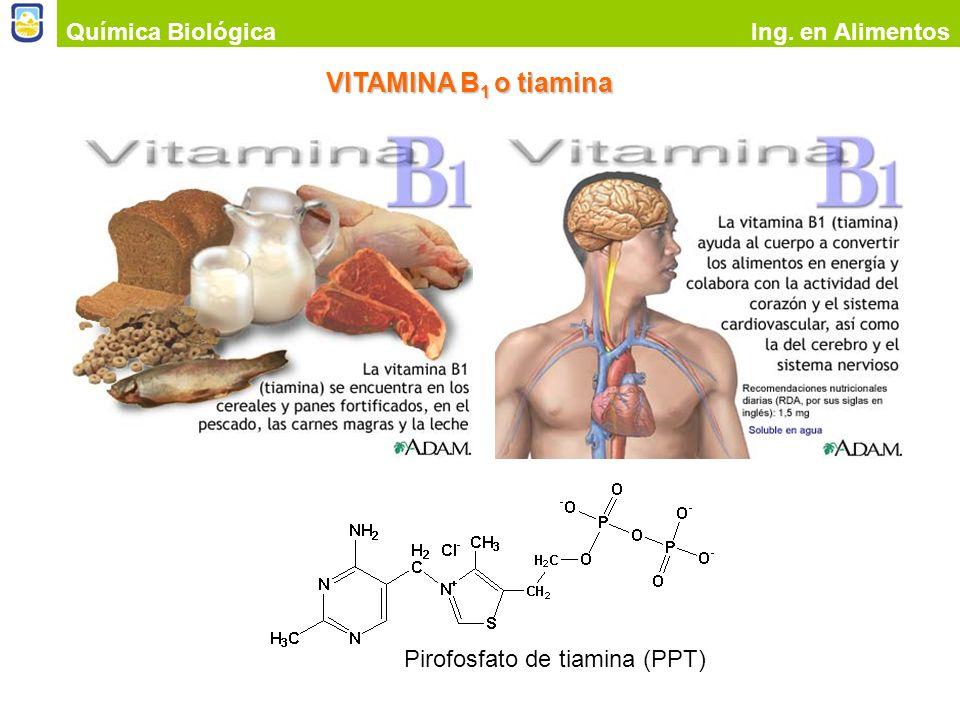 VITAMINA B1 o tiamina Química Biológica Ing. en Alimentos