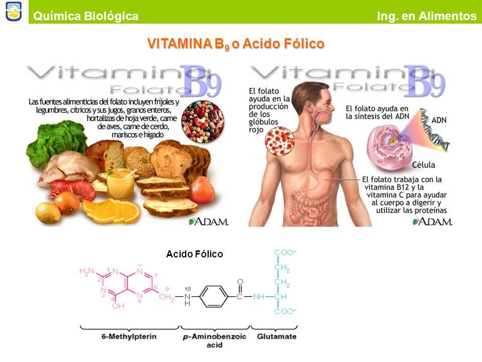 VITAMINA B9 o Acido Fólico
