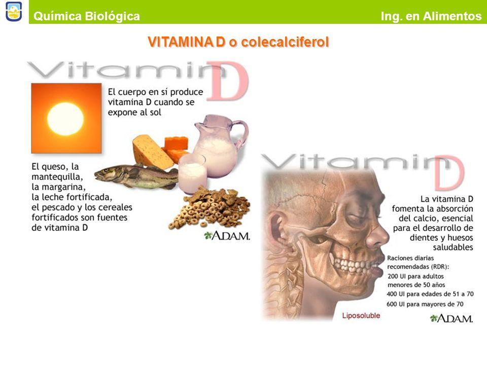 VITAMINA D o colecalciferol