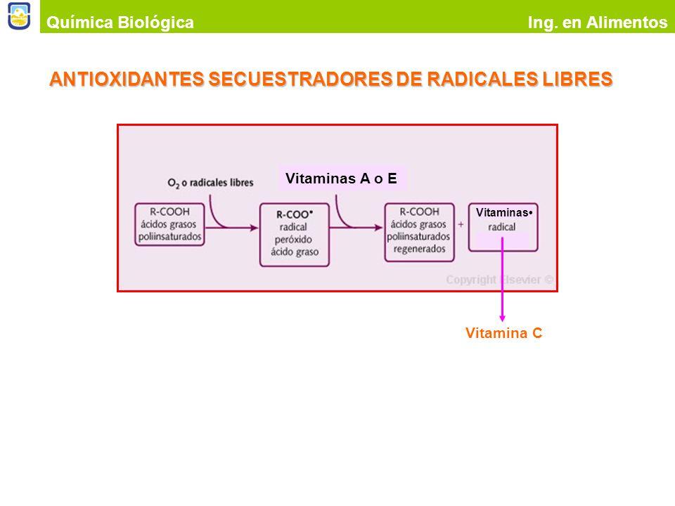 ANTIOXIDANTES SECUESTRADORES DE RADICALES LIBRES