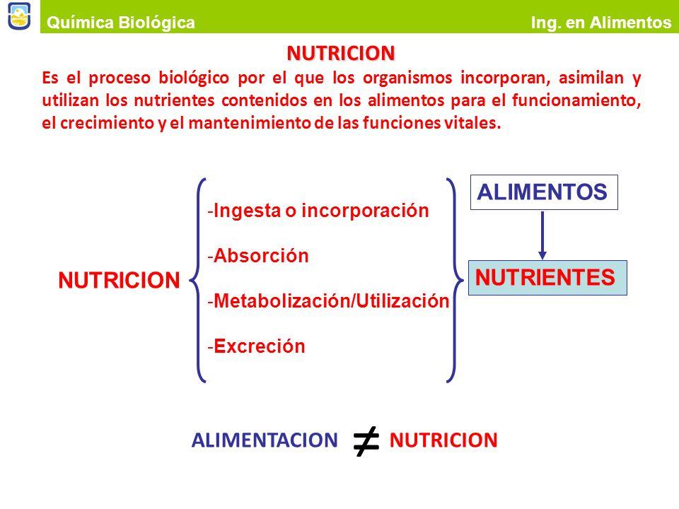 ≠ NUTRICION ALIMENTOS NUTRICION NUTRIENTES NUTRICION ALIMENTACION