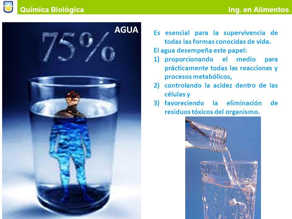 AGUA Química Biológica Ing. en Alimentos