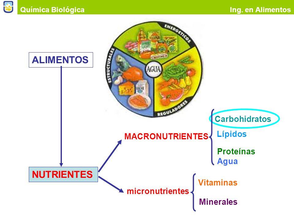 ALIMENTOS NUTRIENTES Carbohidratos Lípidos MACRONUTRIENTES Proteínas