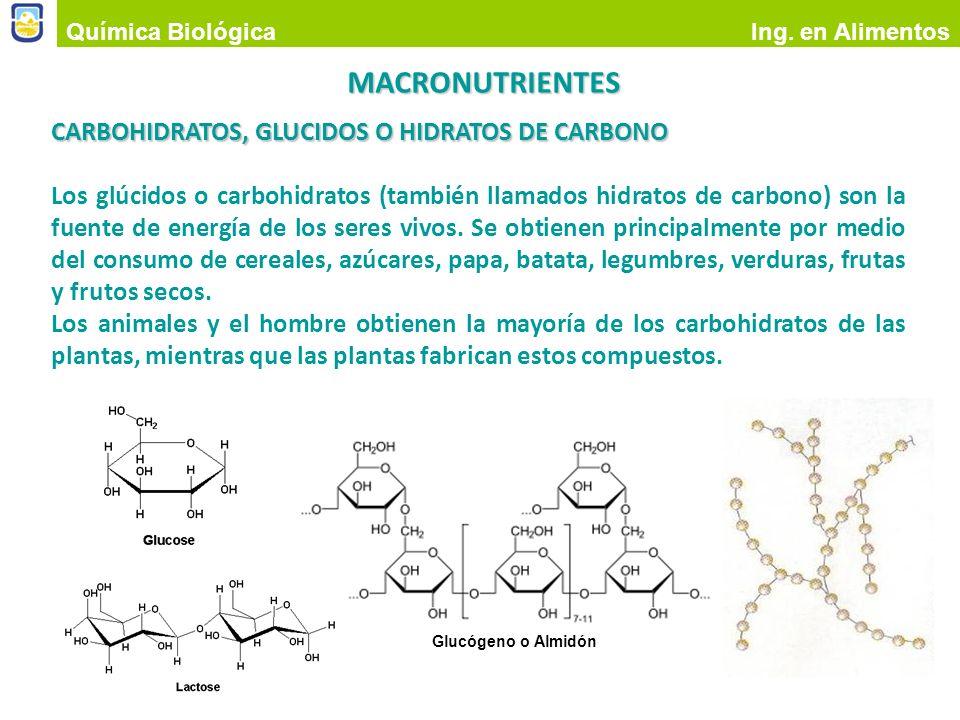 MACRONUTRIENTES CARBOHIDRATOS, GLUCIDOS O HIDRATOS DE CARBONO