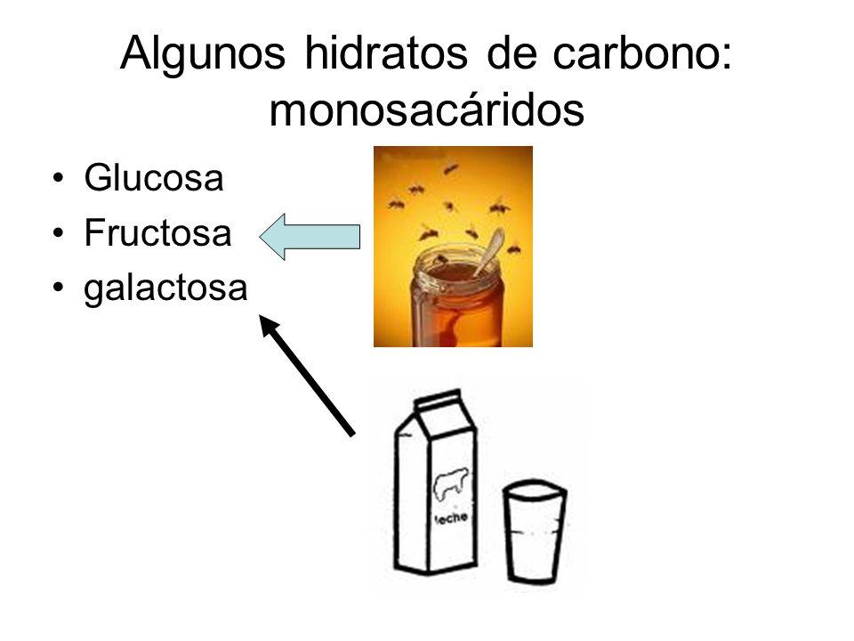 Algunos hidratos de carbono: monosacáridos