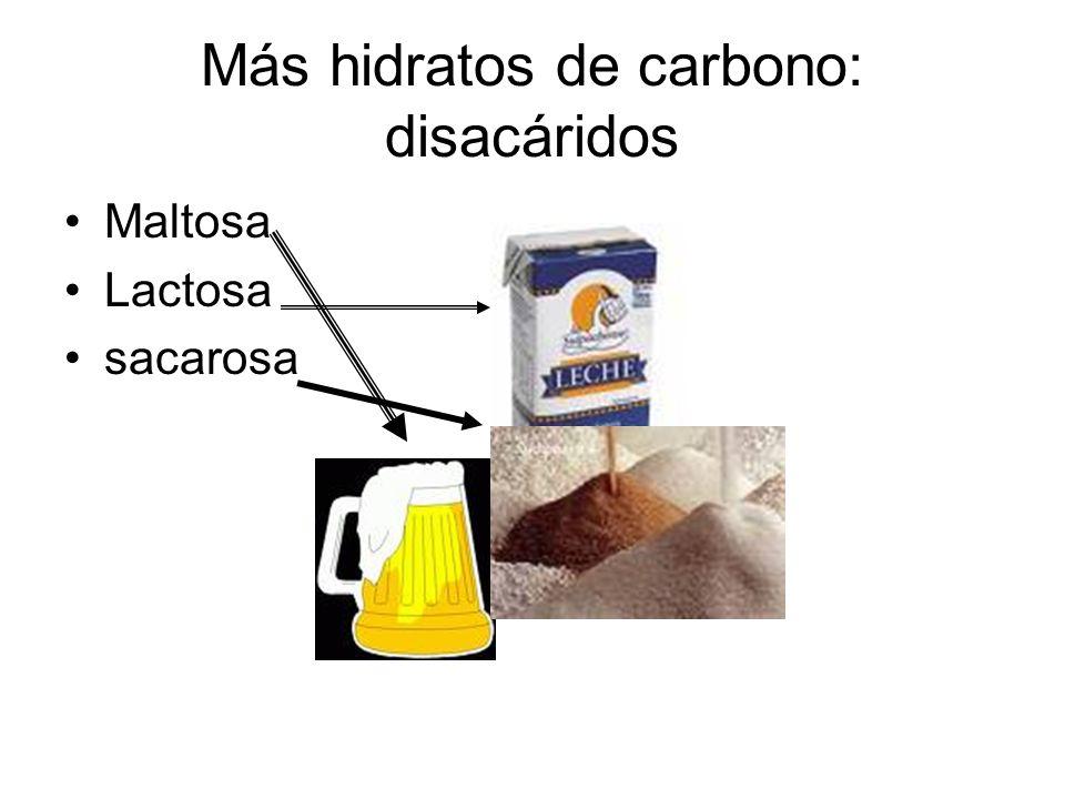 Más hidratos de carbono: disacáridos