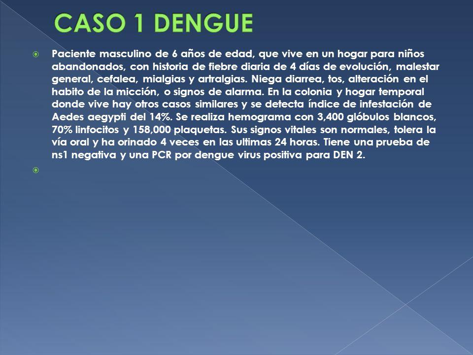 CASO 1 DENGUE