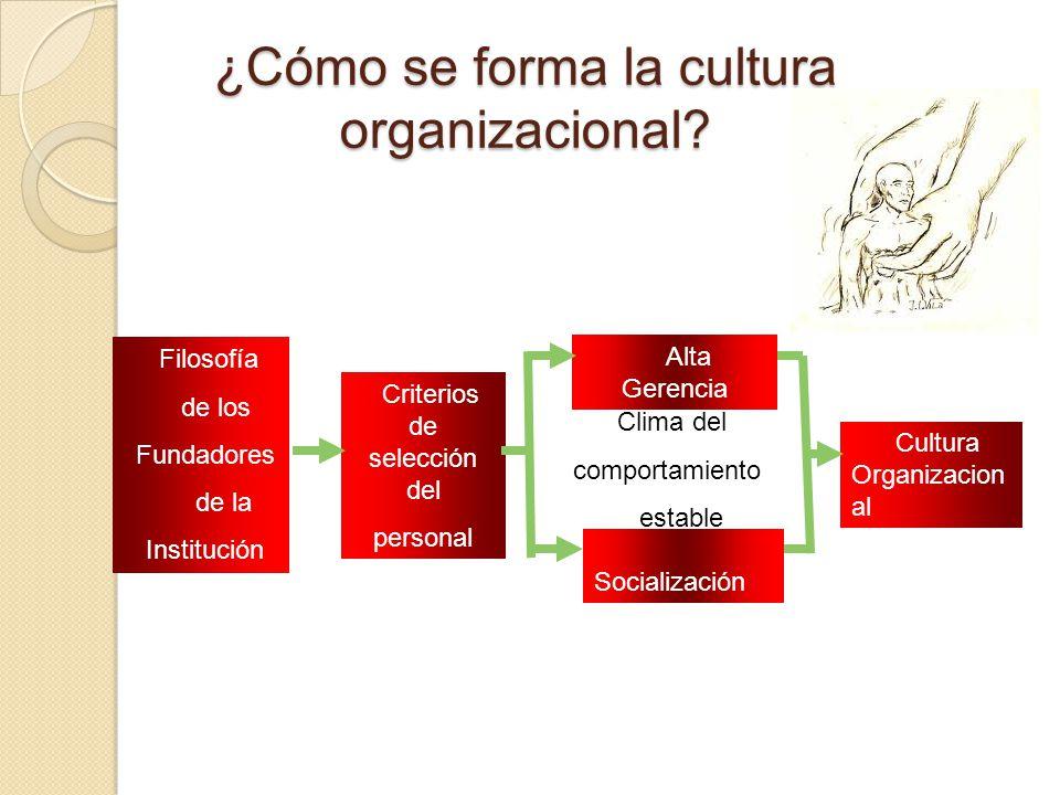 ¿Cómo se forma la cultura organizacional