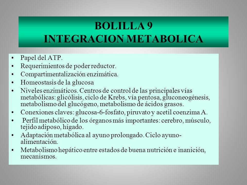 BOLILLA 9 INTEGRACION METABOLICA