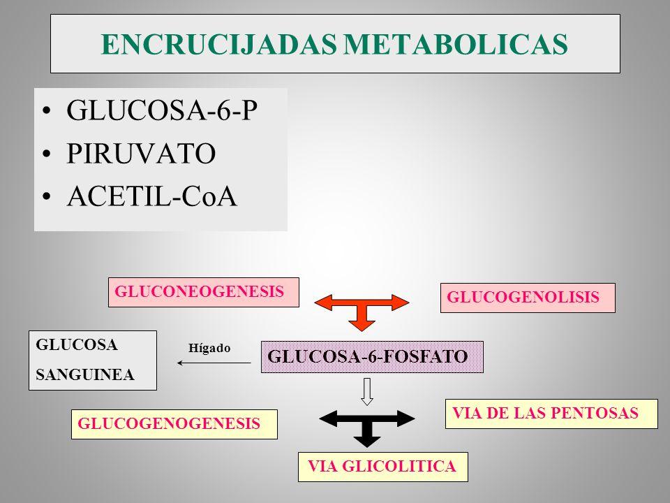 ENCRUCIJADAS METABOLICAS