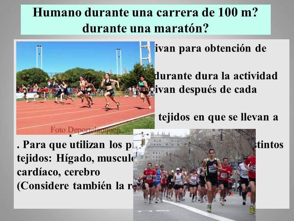 Humano durante una carrera de 100 m durante una maratón