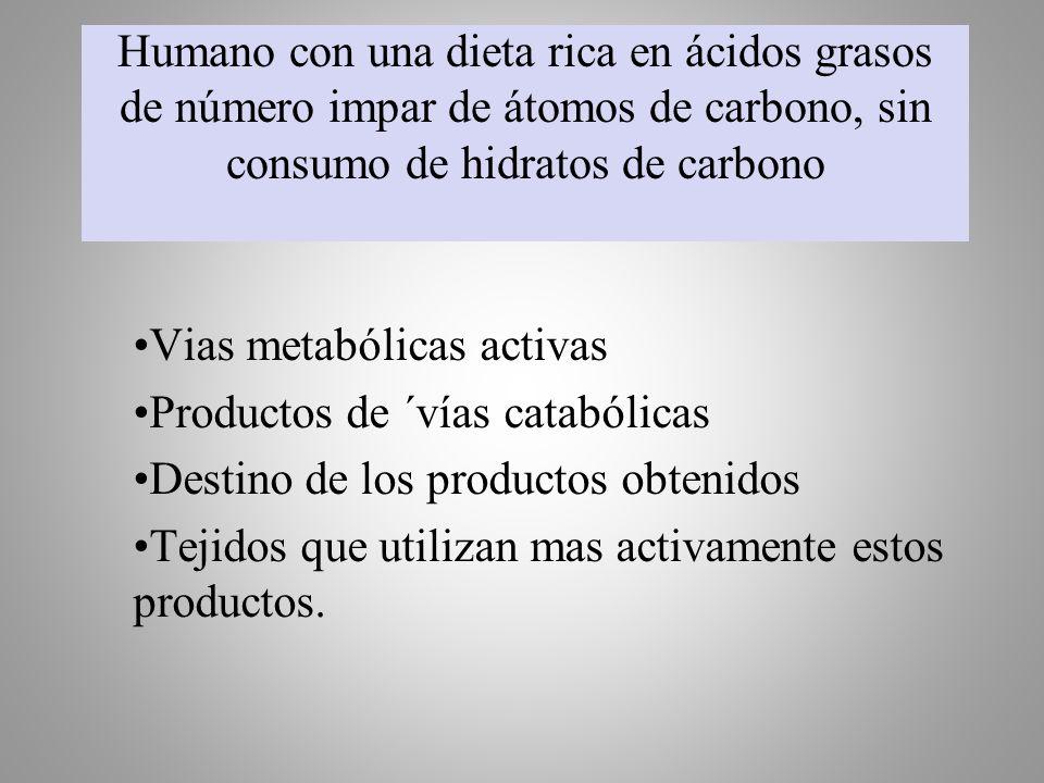 Humano con una dieta rica en ácidos grasos de número impar de átomos de carbono, sin consumo de hidratos de carbono