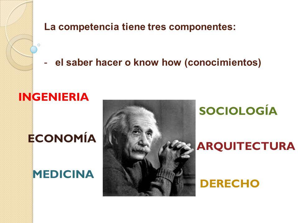 INGENIERIA SOCIOLOGÍA ECONOMÍA ARQUITECTURA MEDICINA DERECHO