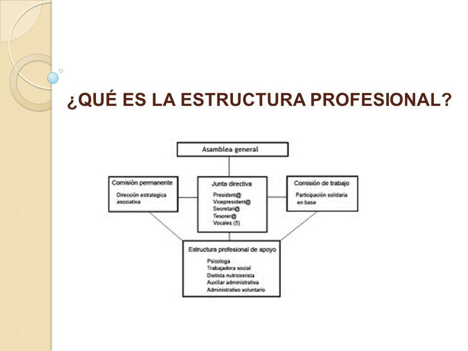 ¿QUÉ ES LA ESTRUCTURA PROFESIONAL