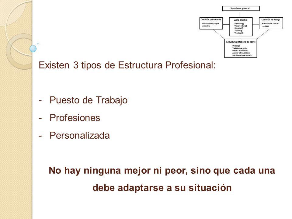 Existen 3 tipos de Estructura Profesional: