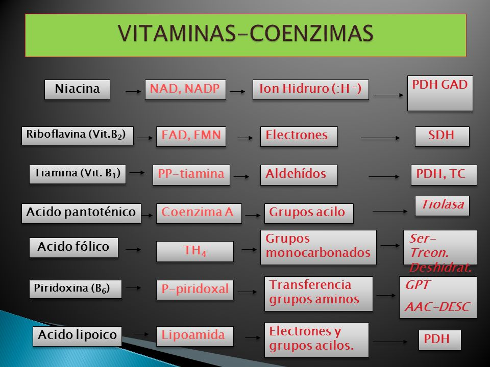 VITAMINAS-COENZIMAS Niacina NAD, NADP Ion Hidruro (:H -) PDH GAD