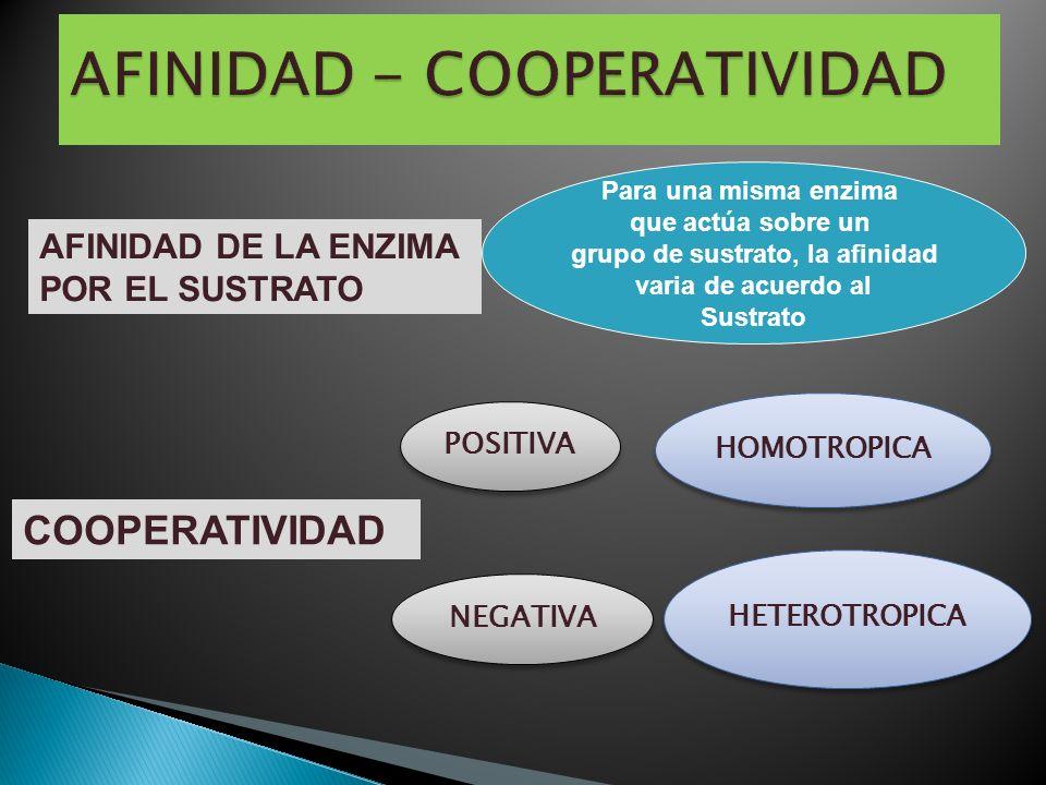 AFINIDAD - COOPERATIVIDAD