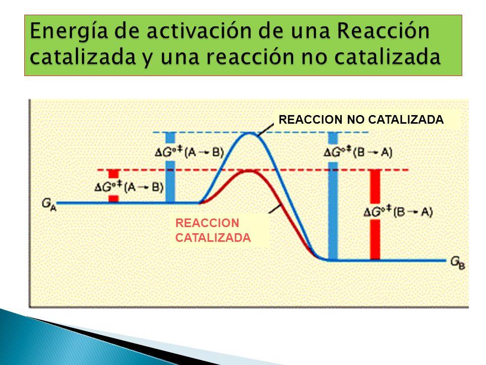 Energía de activación de una Reacción catalizada y una reacción no catalizada