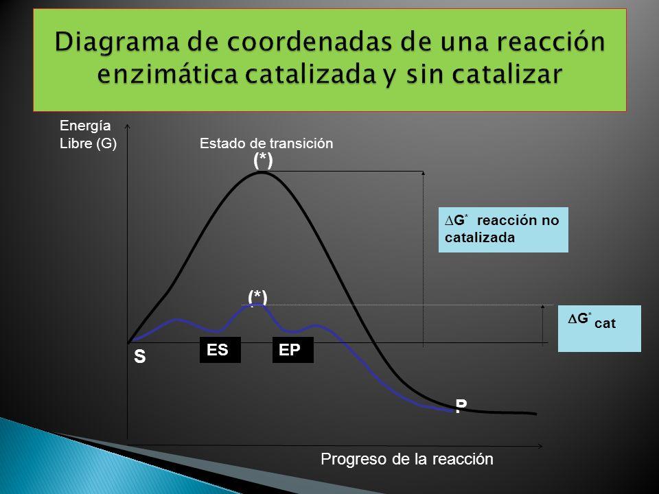 Diagrama de coordenadas de una reacción enzimática catalizada y sin catalizar