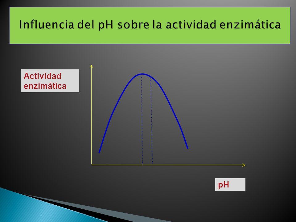 Influencia del pH sobre la actividad enzimática