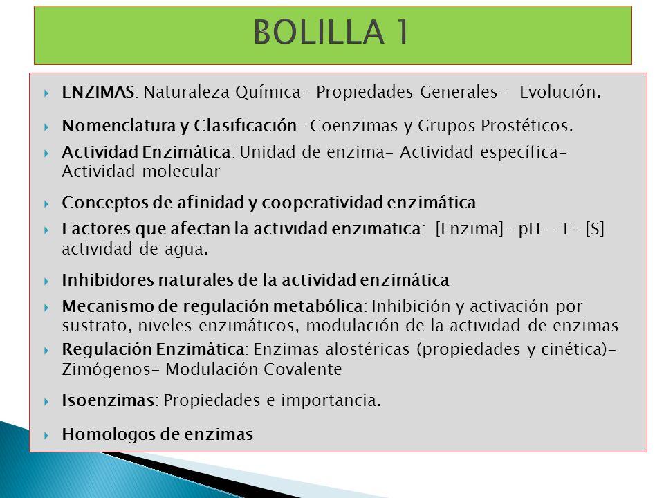 BOLILLA 1 ENZIMAS: Naturaleza Química- Propiedades Generales- Evolución. Nomenclatura y Clasificación- Coenzimas y Grupos Prostéticos.
