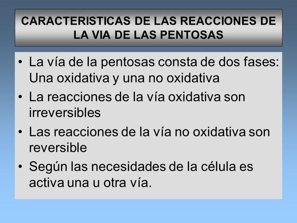 CARACTERISTICAS DE LAS REACCIONES DE LA VIA DE LAS PENTOSAS
