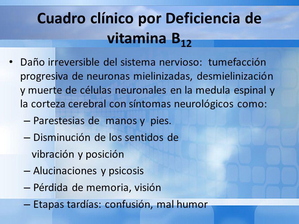 Cuadro clínico por Deficiencia de vitamina B12