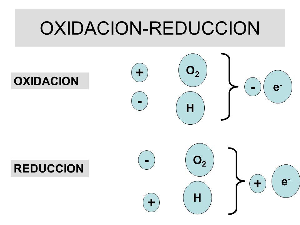 OXIDACION-REDUCCION O2 + e- OXIDACION - - H O2 - REDUCCION e- + H +