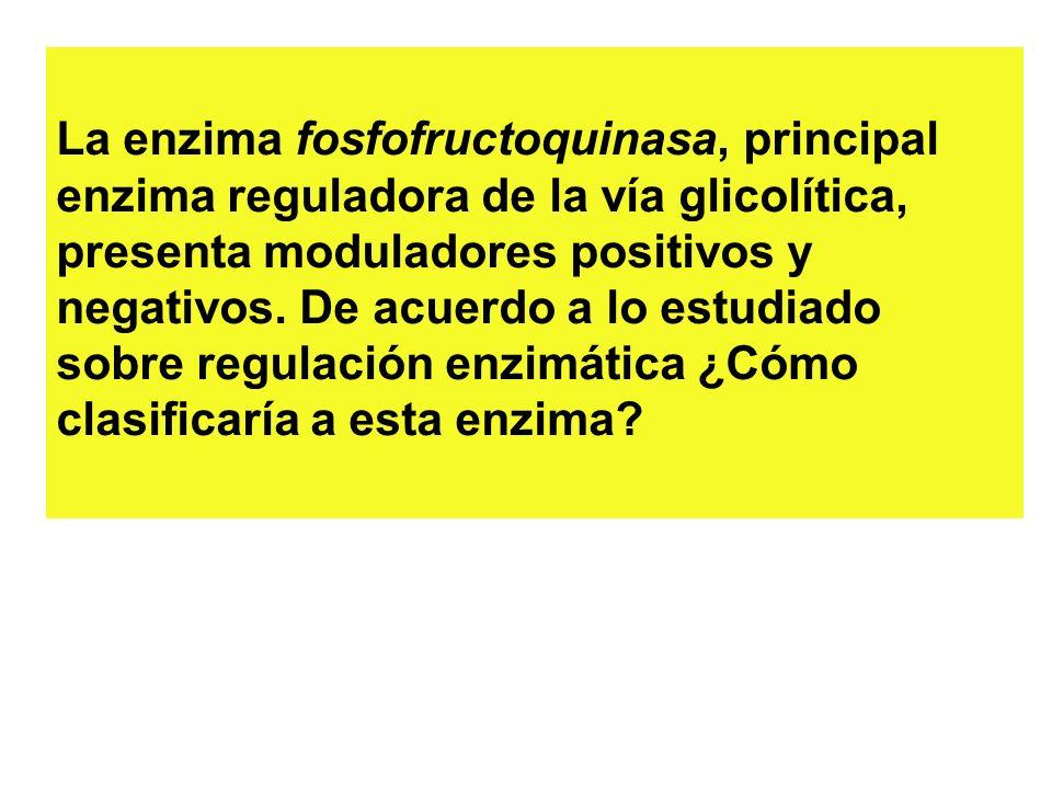 La enzima fosfofructoquinasa, principal enzima reguladora de la vía glicolítica, presenta moduladores positivos y negativos.
