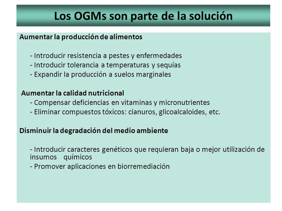 Los OGMs son parte de la solución