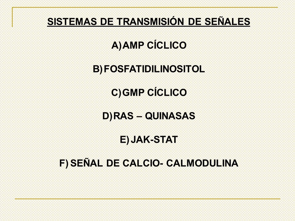 SISTEMAS DE TRANSMISIÓN DE SEÑALES SEÑAL DE CALCIO- CALMODULINA