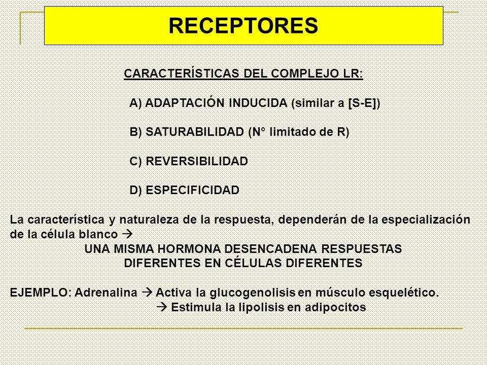 RECEPTORES CARACTERÍSTICAS DEL COMPLEJO LR: