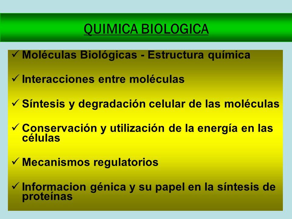 QUIMICA BIOLOGICA Moléculas Biológicas - Estructura química