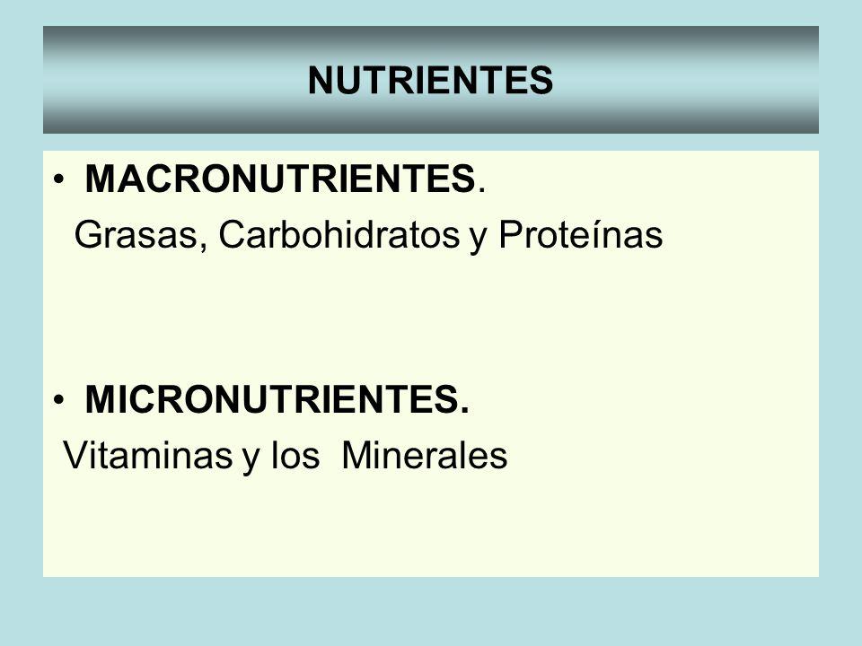 NUTRIENTESMACRONUTRIENTES.Grasas, Carbohidratos y Proteínas.