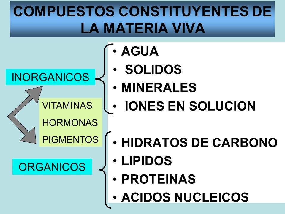 COMPUESTOS CONSTITUYENTES DE LA MATERIA VIVA