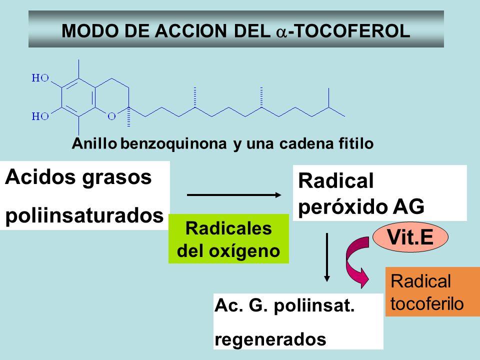 MODO DE ACCION DEL a-TOCOFEROL