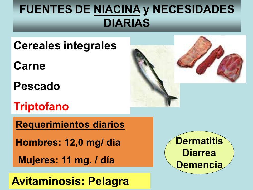 FUENTES DE NIACINA y NECESIDADES DIARIAS